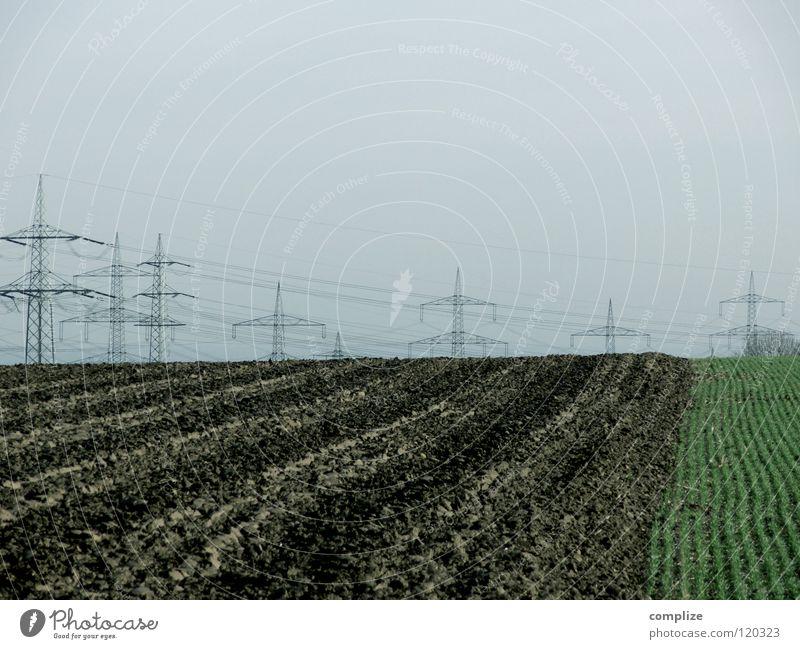 Überlandleitung Elektrizität Feld Kabel Strommast Hochspannungsleitung Energiewirtschaft Erneuerbare Energie Kosten Haushalt Landwirtschaft Stromverbrauch teuer
