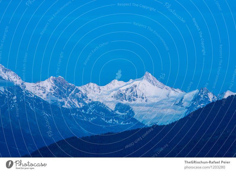 Swiss Alps Umwelt Natur Landschaft Himmel Wolkenloser Himmel Horizont Schnee Felsen Alpen Berge u. Gebirge Gipfel Schneebedeckte Gipfel Gletscher blau grau