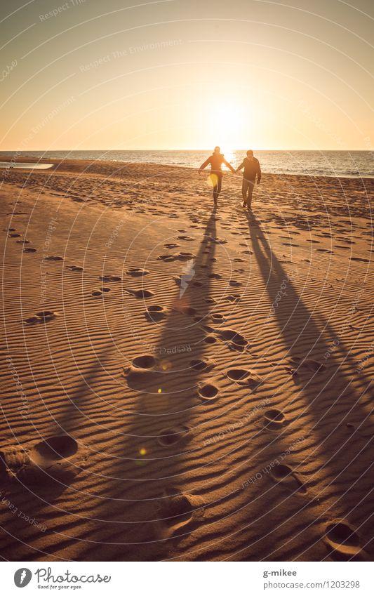 Paar im Sonnenuntergang Natur Sand Wasser Sonnenaufgang Sonnenlicht Strand Ostsee Meer genießen lachen laufen toben Freude Glück Fröhlichkeit Lebensfreude Liebe