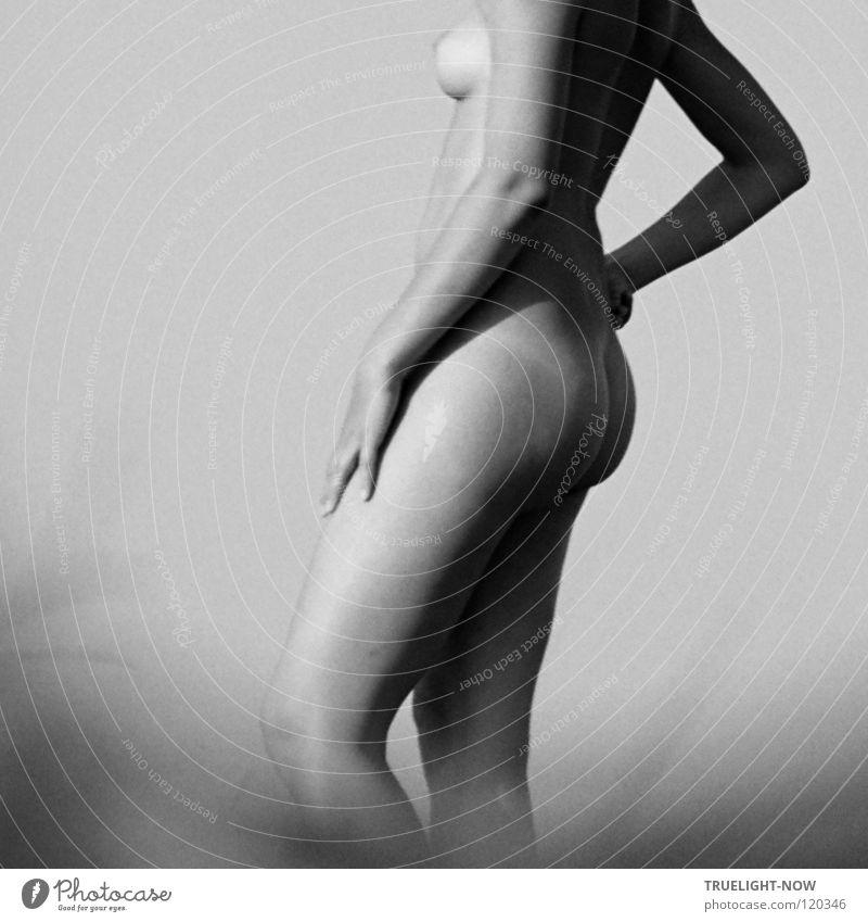 Weiblicher Akt in der Morgensonne Frau Himmel Natur schön nackt Einsamkeit ruhig Ferne Erwachsene feminin Freiheit natürlich offen Haut frei