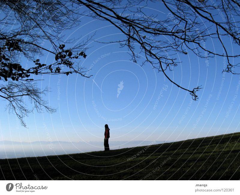 Weitblick Mensch Natur Himmel ruhig Einsamkeit Ferne Erholung Berge u. Gebirge Denken Horizont Ausflug Aussicht stehen Frieden Freizeit & Hobby Ast