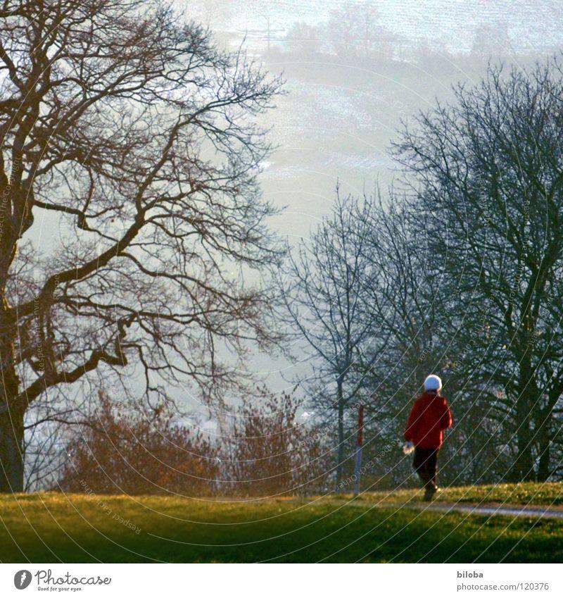 Winterspaziergang Frau alt langsam rot weiß Spaziergang Baum Macht wuchtig einzeln Erholung verwöhnen Sträucher Holz Wiese Physik Licht Schweiz Abendsonne