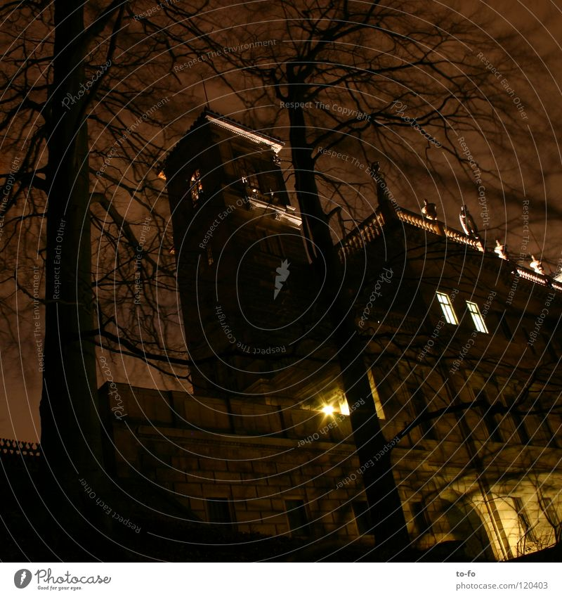 Schloss Albrechtsberg bei Nacht Dresden dunkel Park historisch Langzeitbelichtung Burg oder Schloss Elbschlösser Architektur