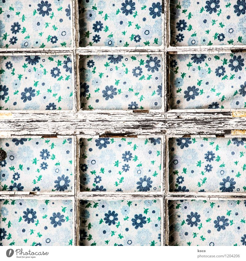 Blumengitter alt blau grün weiß Blatt Fenster Blüte Holz braun Linie Dekoration & Verzierung trist Vergänglichkeit Vergangenheit Stoff Verfall