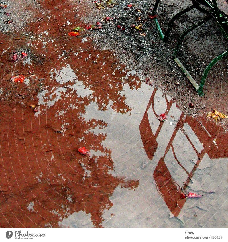 Nah am Wasser gebaut rot Blatt braun dreckig wandern Trauer Pause Fluss Dresden Gastronomie Stahl Verzweiflung feucht Bach Pfütze
