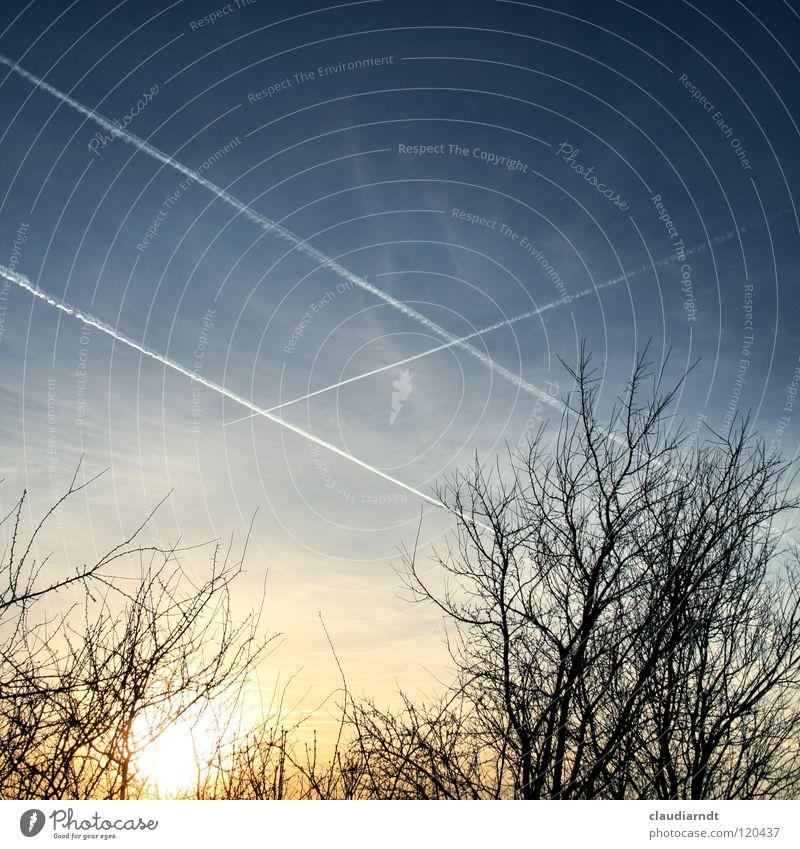 Moses Himmel blau gelb außergewöhnlich träumen leuchten Sträucher Zeichen Streifen Macht Hoffnung Glaube entdecken Kreuz Gott Erkenntnis