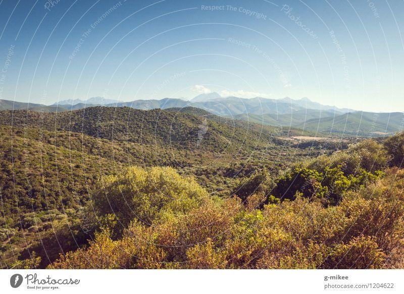 Korsika Natur Landschaft Himmel Sommer Wald Hügel Ferien & Urlaub & Reisen groß Unendlichkeit Wärme blau grün mediterran Insel Farbfoto Außenaufnahme