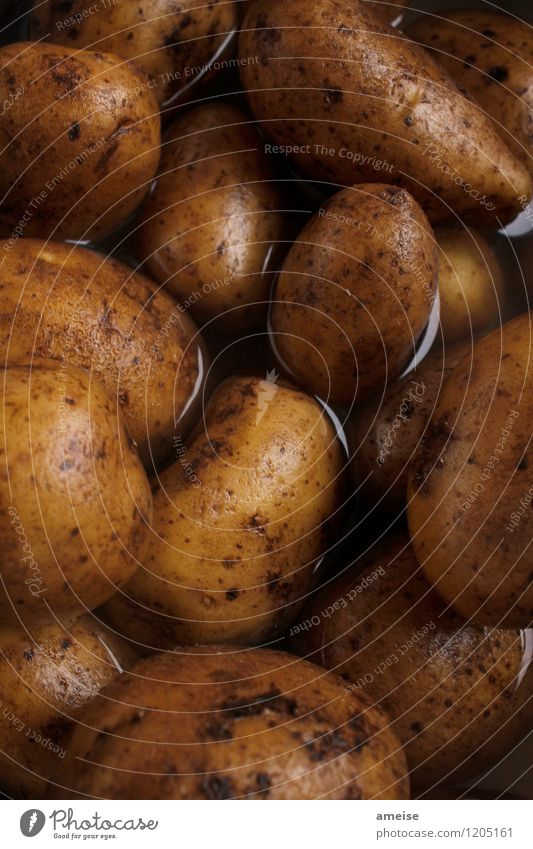 Kartoffel | Festkochend (2) Natur Wasser schwarz gelb Essen braun Lebensmittel Erde Ernährung Urelemente Gemüse Bioprodukte Appetit & Hunger Abendessen