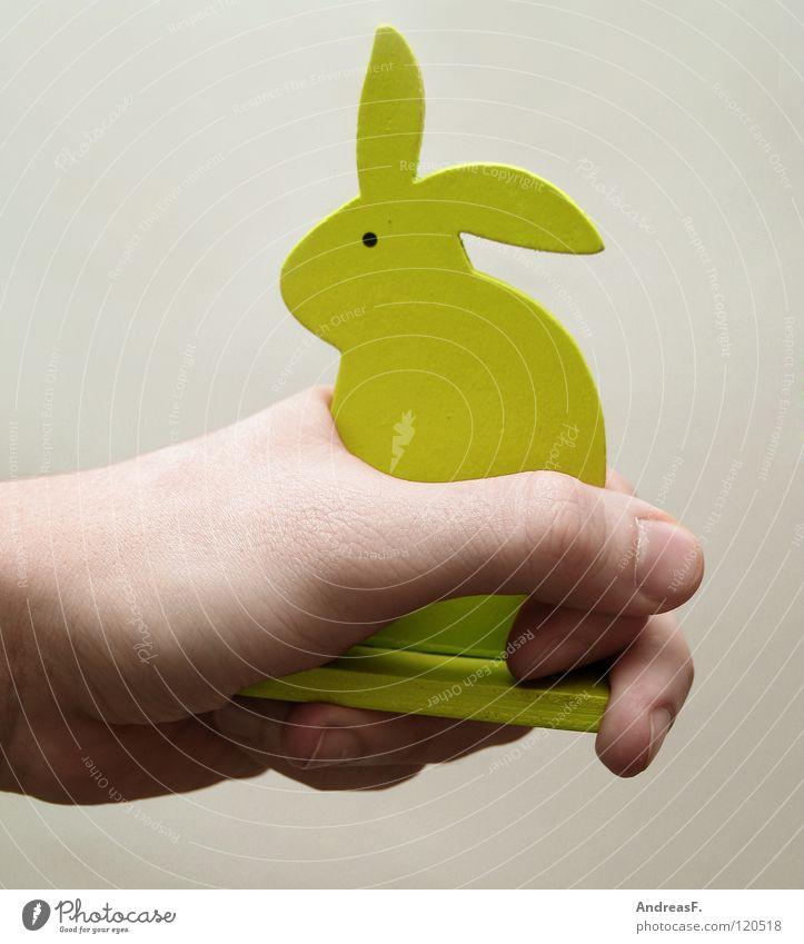 Handzahm. Hase & Kaninchen Ostern Holz Frieden festhalten gefangen im Griff Haustier Streicheln Streichelzoo Säugetier Osterhase sanft handzahm holzhase