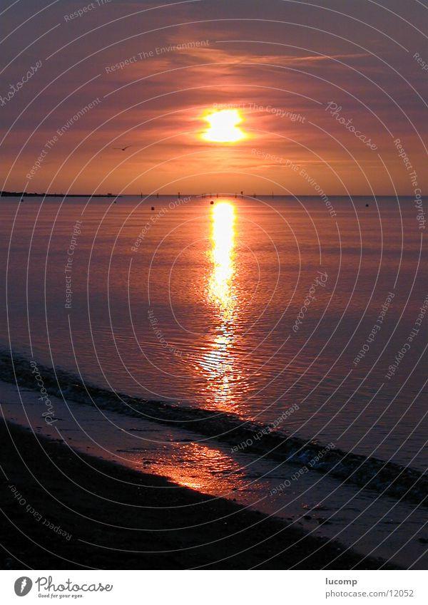 Abendsonne/Ostsee/Fehmarn Sonnenuntergang rot Meer Abenddämmerung Wellen Wellengang Licht Strand Romantik Horizont Wasser Lichtschein