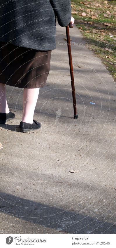 gehstock Frau Mensch alt Straße Herbst Leben Senior Bewegung Beine Gesundheit braun Schuhe gehen laufen Gesundheitswesen Spaziergang