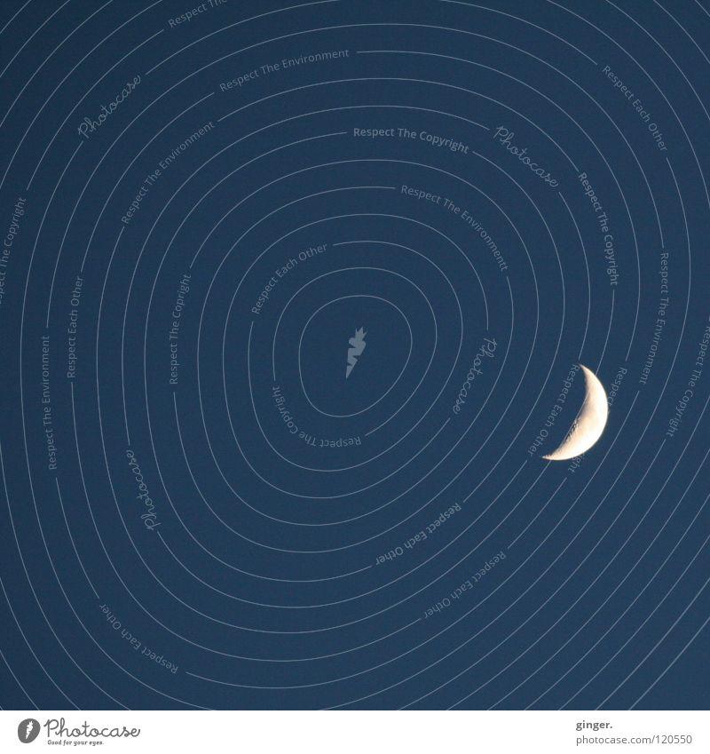 Der faszinierende Erdumrunder blau weiß Lampe Spitze Mond Wolkenloser Himmel Nachthimmel Himmelskörper & Weltall Halbmond Sichelmond nur Himmel