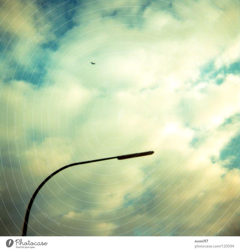 Lightleaks II Laterne Straßenbeleuchtung Licht Lampe Götter Lichteinfall Holga analog Lomografie Kommunizieren Himmel Beleuchtung Wetterleuchte Ferne Gott