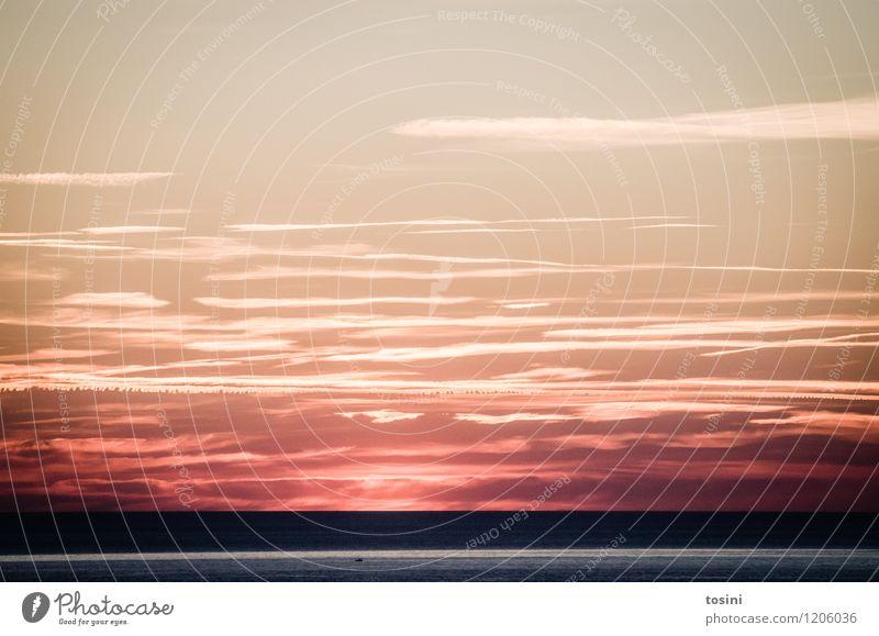 Red Light Natur schön Wolken Meer Sehnsucht gewaltig Kondensstreifen Farbfoto Außenaufnahme Menschenleer Textfreiraum oben Sonnenlicht Sonnenaufgang