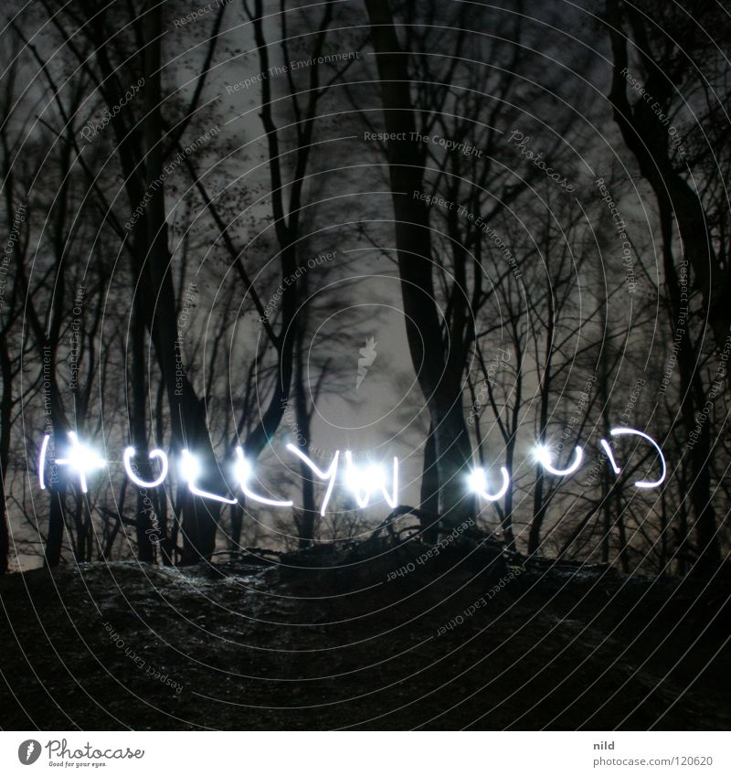 "The ""CollabSessions"" Vol.1 Wald Angst Filmindustrie schreiben Panik Fantasygeschichte Medien Hollywood Handschrift Los Angeles"