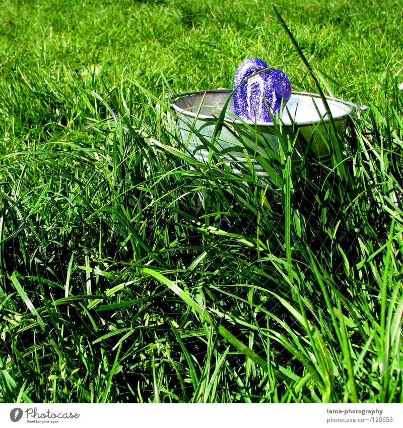 Jo is denn heut scho...Ostern? Osternest Osterei Ostermontag Hase & Kaninchen Hasenohren Löffel Suche Wiese Gras Halm Frühling frisch grün Schokolade Eimer Nest
