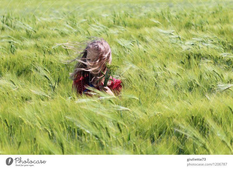 Naturkind Kind Mädchen Kindheit Leben Haare & Frisuren 1 Mensch 8-13 Jahre Umwelt Landschaft Frühling Schönes Wetter Wind Pflanze Nutzpflanze Kornfeld Gerste