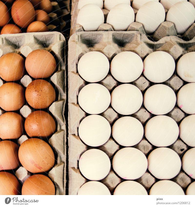 markttag weiß Tier Essen braun Lebensmittel Zusammensein liegen stehen Ernährung Flügel Kochen & Garen & Backen Tiergruppe kaufen Güterverkehr & Logistik