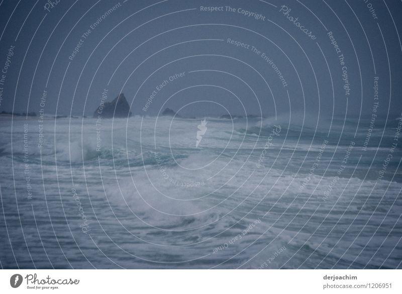 Am Ende der Welt exotisch Schwimmen & Baden Umwelt Wasser Sommer Sturm Meer Pazifik Queensland Australien Menschenleer Stein beobachten Blick warten authentisch