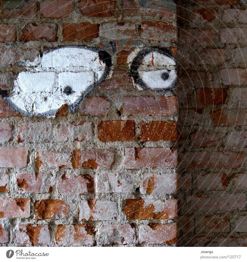 I Love Crash Unglaube erstaunt erschrecken Angst unruhig Panik Wand Mauer obskur Graffiti Wandmalereien Auge Blick spähen bestrebt bedenklich bemüht Sorge