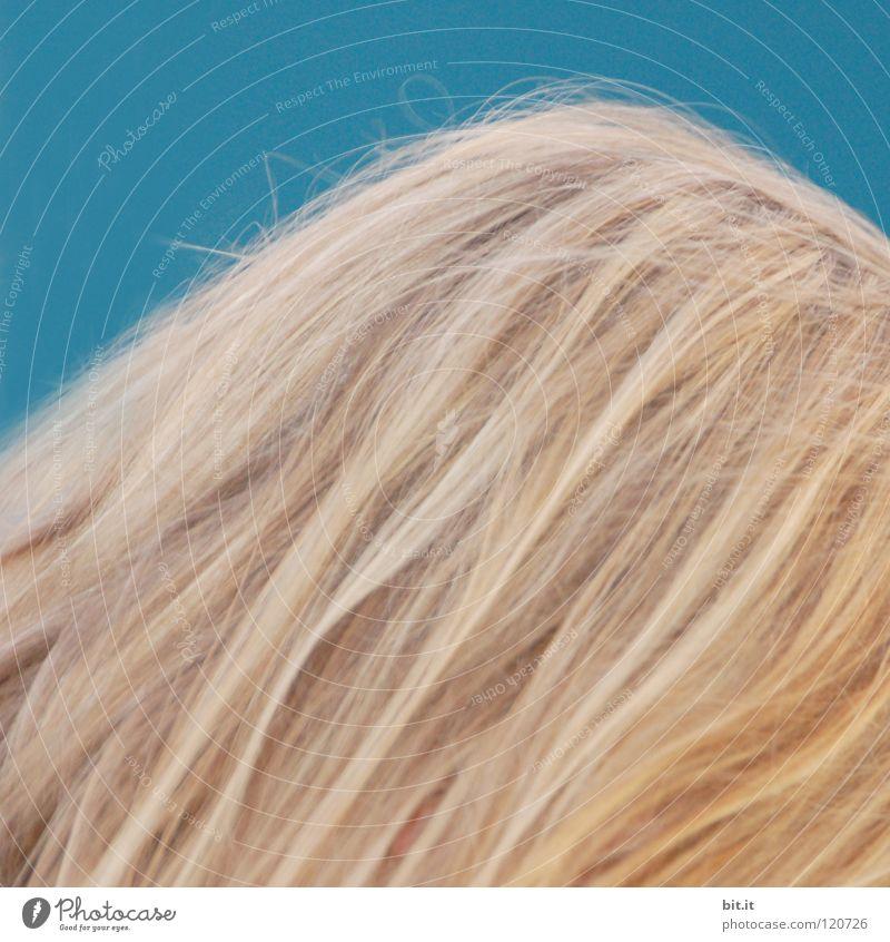 HELLES KÖPFCHEN Kopf Haare & Frisuren Sturmfrisur Haarsträhne blond Dienstleistungsgewerbe Friseur ey