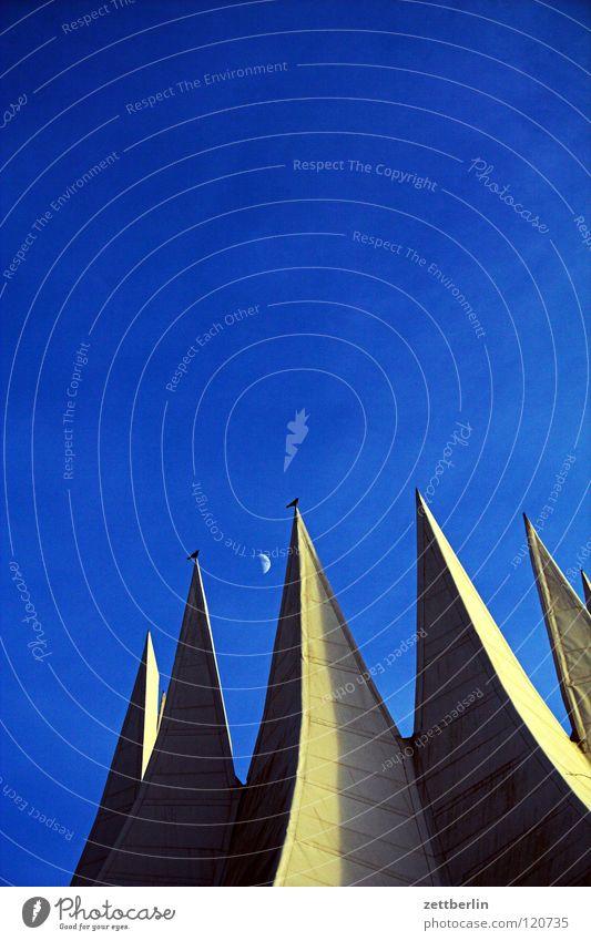 Tempo Tempodrom Dach Beton Veranstaltung Kultur Wahrzeichen Vogel Krähe Halbmond abnehmend himmelblau Architektur Club Berlin modern veranstaltungsort Spitze