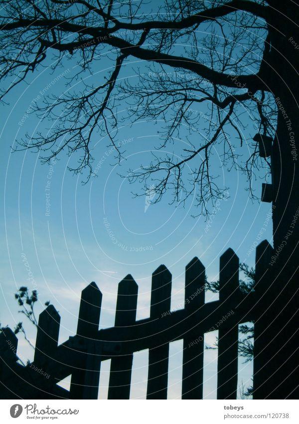 Baumhaus mit Vorgarten Haus Garten Blume Wiese Vogel dunkel hell blau schwarz Stimmung Zaun Futterhäuschen Ast Baumkrone Vöglein Silouette Abend