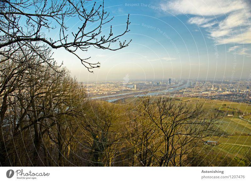 Blick auf Wien 1 Umwelt Natur Landschaft Luft Himmel Wolken Horizont Frühling Wetter Schönes Wetter Pflanze Baum Wald Hügel Fluss Donau Österreich Stadt