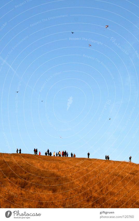 aufgefädelt Herbst Luft mehrfarbig Wiese Gras Spielen Berge u. Gebirge Drache drachen steigen Wind Himmel Mensch teufelsberg
