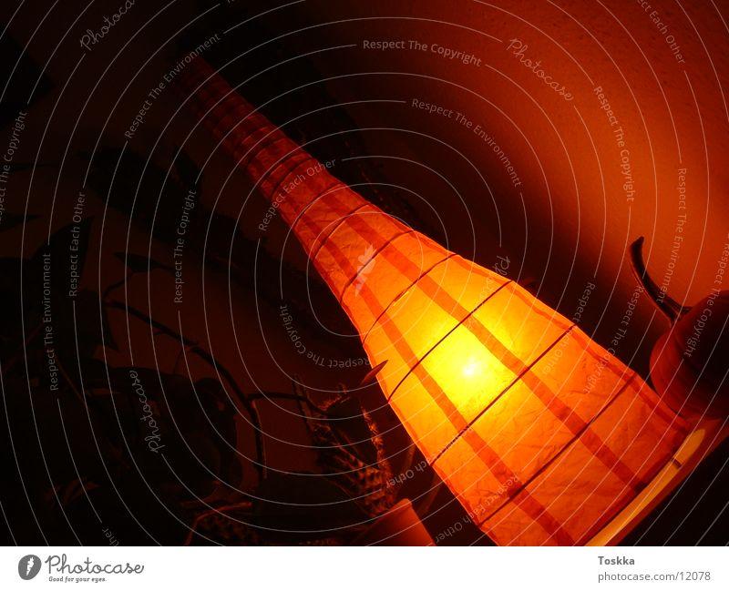 Orangelamp Lampe dunkel Stil orange Häusliches Leben Foyer Kaktus Sukkulenten