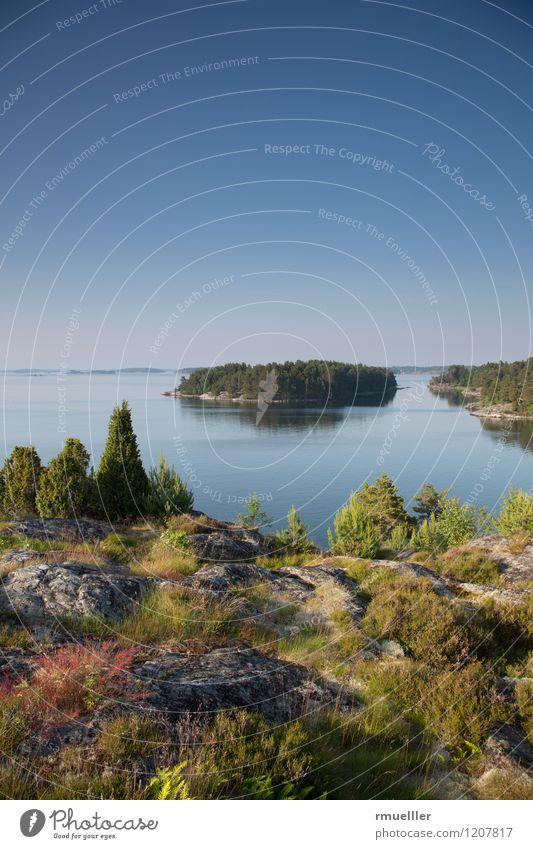 svenskt sommar Himmel Natur Ferien & Urlaub & Reisen blau Pflanze grün Sommer Landschaft Ferne Umwelt Gefühle Küste Freiheit braun Stimmung Horizont