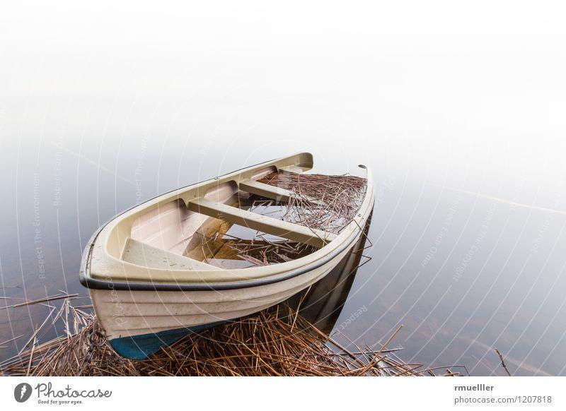 Das Boot Ferien & Urlaub & Reisen Ausflug Abenteuer Ferne Freiheit Umwelt Natur Landschaft Nebel See Erholung Wasserfahrzeug Ruderboot Stroh Stimmung