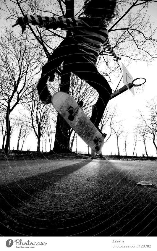 kickflip Abenddämmerung Aktion Skateboarding Zufriedenheit Kickflip Salto springen gestreift Teer Beton Licht Baum Weitwinkel Jugendliche Sport Funsport Mensch