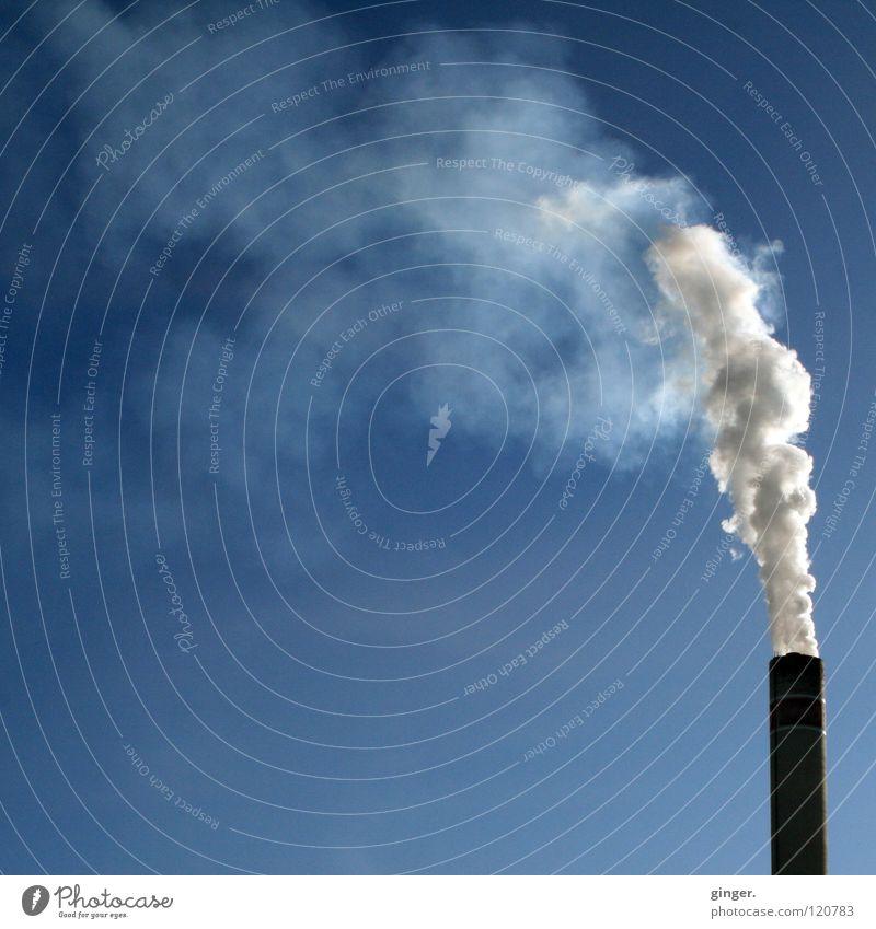 Weißgrau in Blau Industrie Himmel Schornstein Rauch hoch blau weiß blasen Emission Umweltverschmutzung Blauer Himmel Textfreiraum links Textfreiraum oben