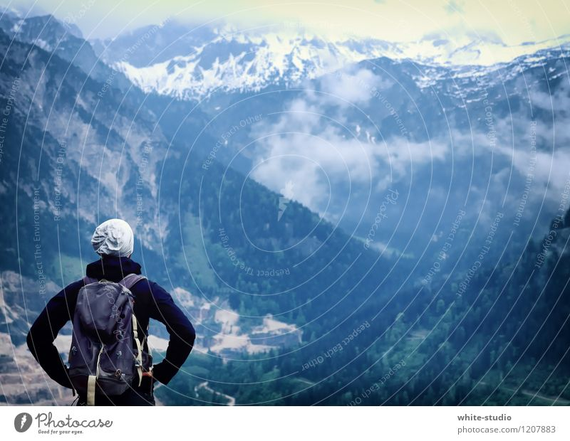 Bereit für Abenteuer Natur Ferien & Urlaub & Reisen Mann Pflanze Sommer Erholung Ferne Wald Erwachsene Umwelt Berge u. Gebirge Leben Sport Freiheit Felsen