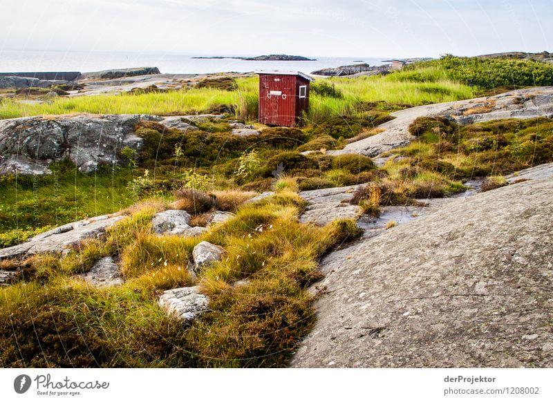 Das Stille Örtchen Natur Ferien & Urlaub & Reisen Pflanze Sommer Landschaft Tier Ferne Strand Umwelt Gefühle Küste Freiheit Freundschaft Felsen Tourismus Wellen