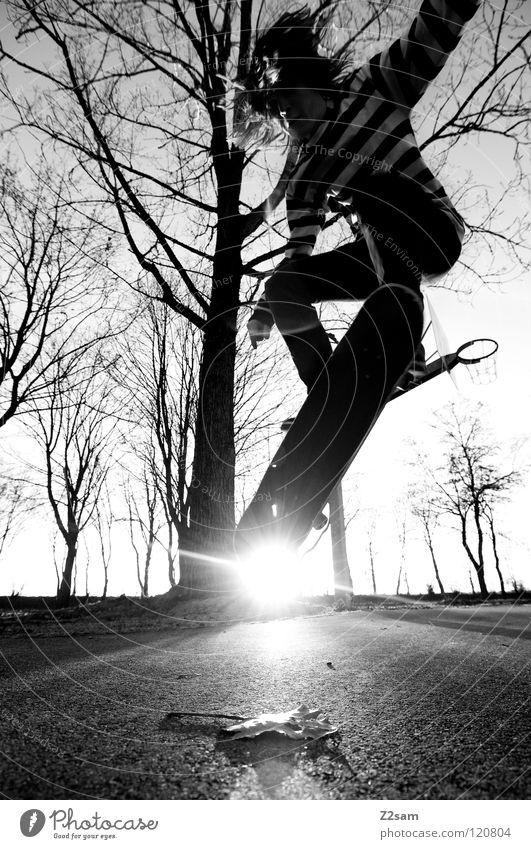 go skating Mensch Jugendliche Baum Sonne Blatt Sport springen Bewegung Zufriedenheit Beleuchtung fliegen Beton Aktion Bodenbelag Skateboarding Holzbrett