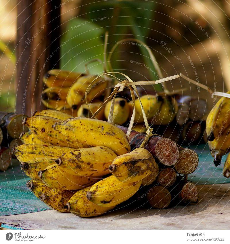 Elefantenfutter Natur blau gelb Gras Holz Gesundheit braun Frucht Ernährung Dekoration & Verzierung süß Asien Thailand Schleife Tischwäsche Futter