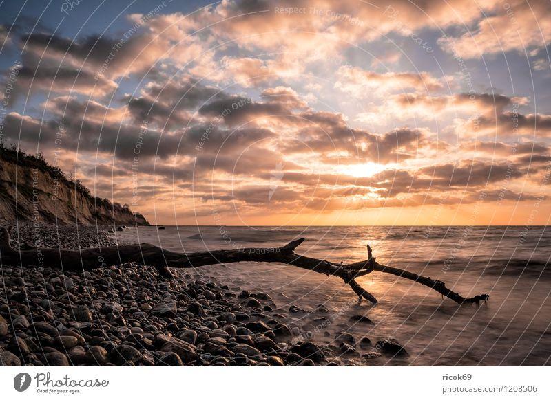 Treibholz an der Küste der Ostsee Erholung Ferien & Urlaub & Reisen Strand Meer Natur Landschaft Wasser Wolken Schönes Wetter Stein Holz Romantik Idylle