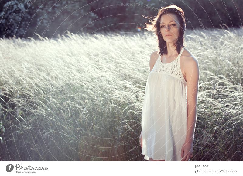 #1208866 Freizeit & Hobby Freiheit Sommer Sonne Frau Erwachsene Mensch Umwelt Natur Pflanze Sonnenaufgang Sonnenuntergang Sonnenlicht Feld Wald Kleid langhaarig