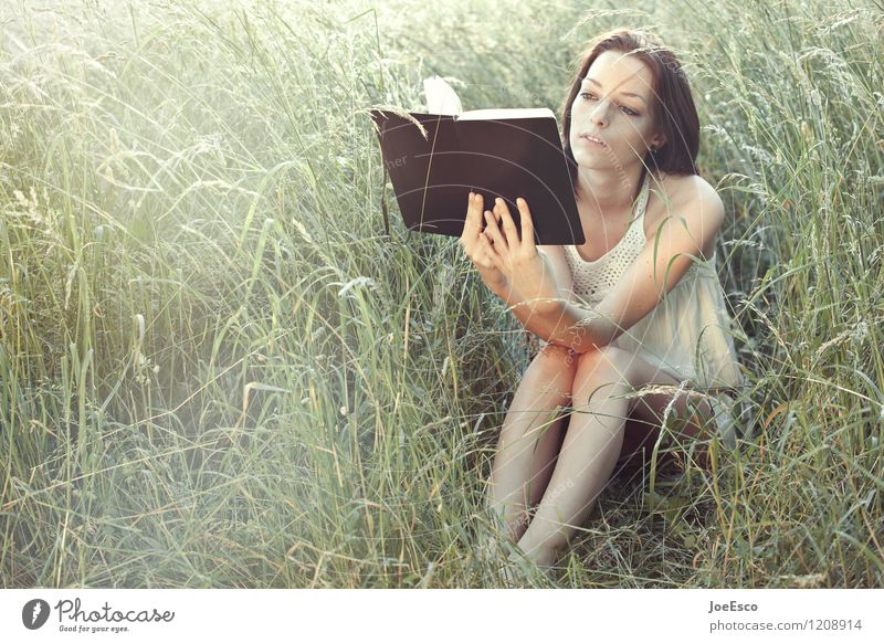 #1208914 Freizeit & Hobby Freiheit Sommer Sommerurlaub Garten lernen Frau Erwachsene Leben Natur Sonnenlicht Gras Sträucher Wiese beobachten Erholung lesen