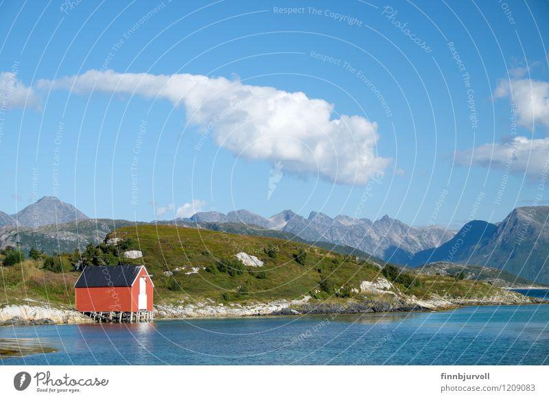 Himmel blau grün Sommer Baum Blume Wolken Berge u. Gebirge Gras Hütte Norden Norwegen Arktis Bootshaus
