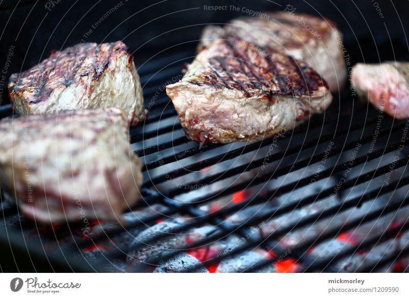 Saftige Steaks am Holzkohlegrill Gesunde Ernährung Lebensmittel Lifestyle rosa genießen weich lecker Duft Grillen Fleisch saftig Fastfood Glut Grillrost