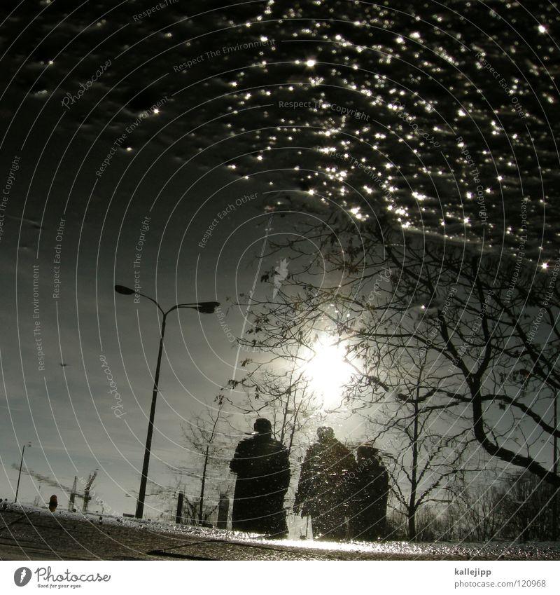 three, tree, me Pfütze Reflexion & Spiegelung Stadt Lampe Laterne Sonnenuntergang Romantik Haus Gebäude Mieter Mensch Herbst Wohnung Bewohner Fußgänger