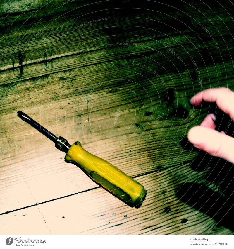 billy and his screwdriver Hand Arbeit & Erwerbstätigkeit Bodenbelag Handwerk Werkzeug greifen Daumen Holzfußboden Tanzfläche selbstgemacht Schlitz Heimwerker