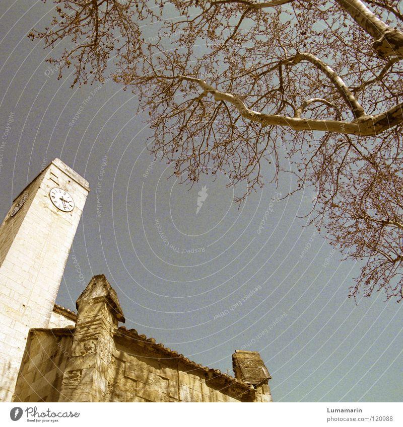 Mit der Zeit Himmel alt Baum Stein Religion & Glaube warten laufen Uhr Turm Vergänglichkeit Ast Bauwerk historisch Jahr vergangen