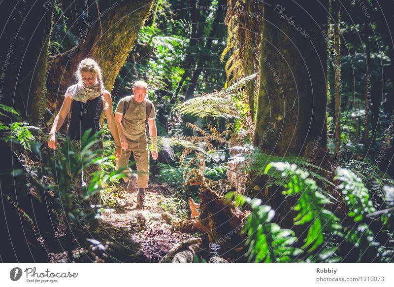 ...durch den Regenwald... Ferien & Urlaub & Reisen Tourismus Ausflug Abenteuer wandern Junge Frau Jugendliche Mann Erwachsene 2 Mensch Wald Urwald Australien
