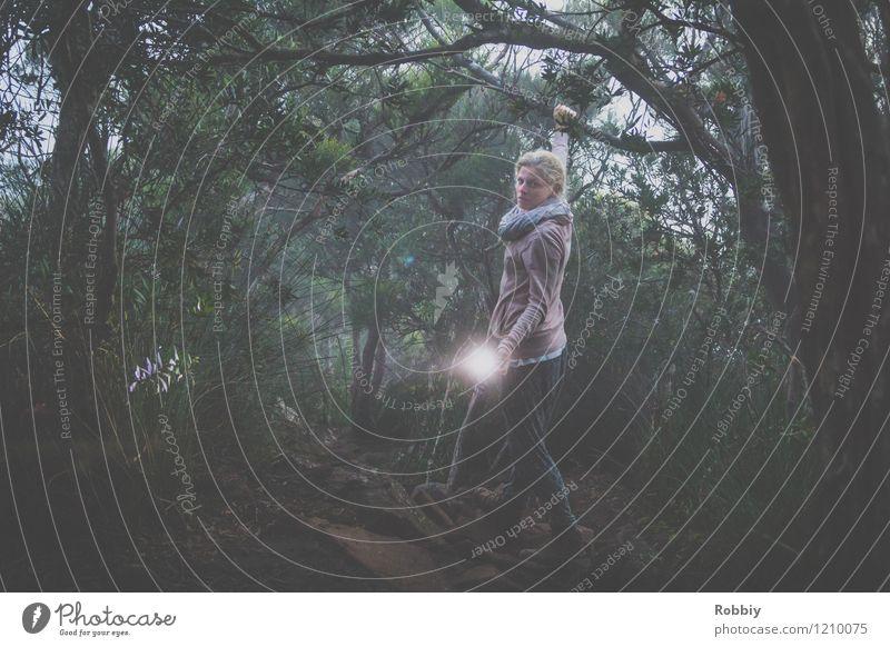 Nebelwanderung Mensch Ferien & Urlaub & Reisen Jugendliche Junge Frau Einsamkeit dunkel Wald kalt feminin Wege & Pfade leuchten Tourismus wandern bedrohlich