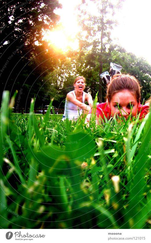 Summer time Gras Wiese Spielplatz Physik Sonne Turnschuh Garten Park fun Zunge Freude verstecken Wärme Abend