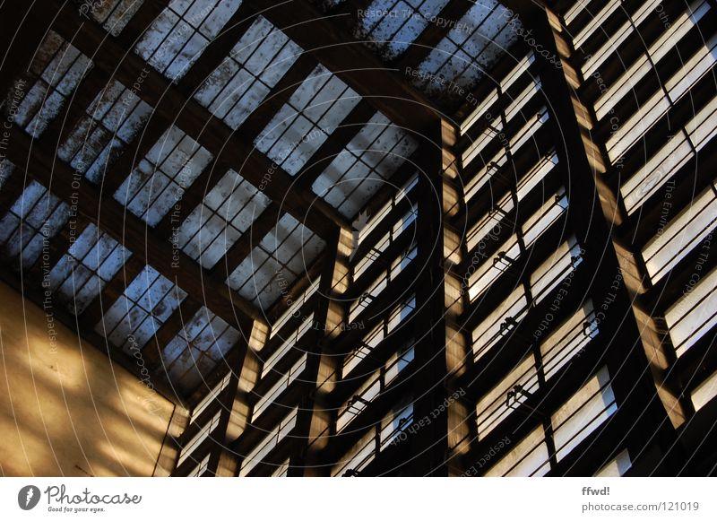 Dachfenster alt Einsamkeit Fenster Gebäude Stimmung Lager dreckig Glas Industrie Fabrik verfallen historisch Lagerhalle Fensterscheibe Decke Fabrikhalle